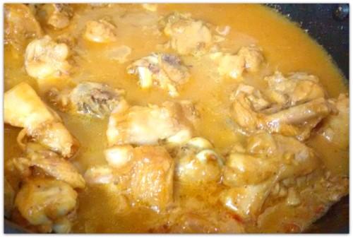Chicken Curry 16